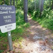 best day hikes Mountains to Sea Trail