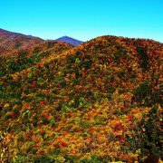 2014_09_asheville-fall-festivals-feature.jpg