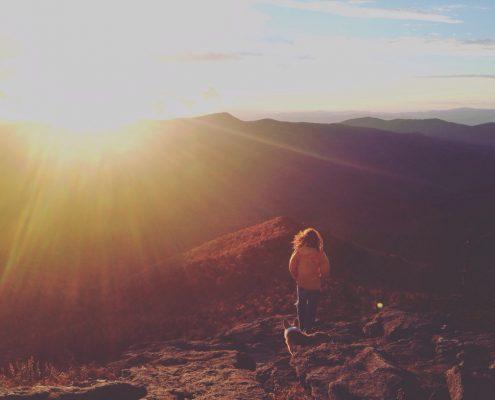 A vista in Mt. Mitchell State Park.